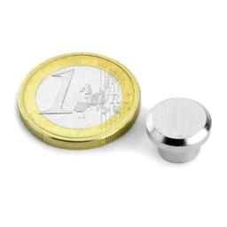 Büromagnet aus Stahl 12mm